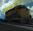 Acele Treni Yakala