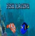 Canlı Balık Yarışı