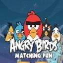 Kızgın Kuşlar Maçı